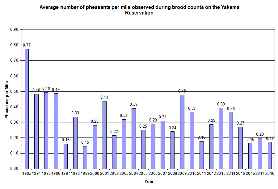 Pheasant Counts, Click To Enlarge
